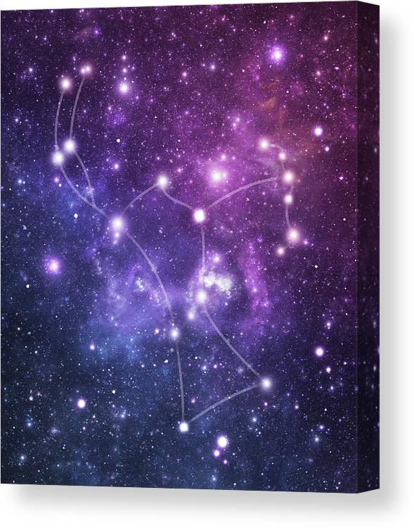 Black Color Canvas Print featuring the photograph The Stars Constellation Of Orion by Sololos