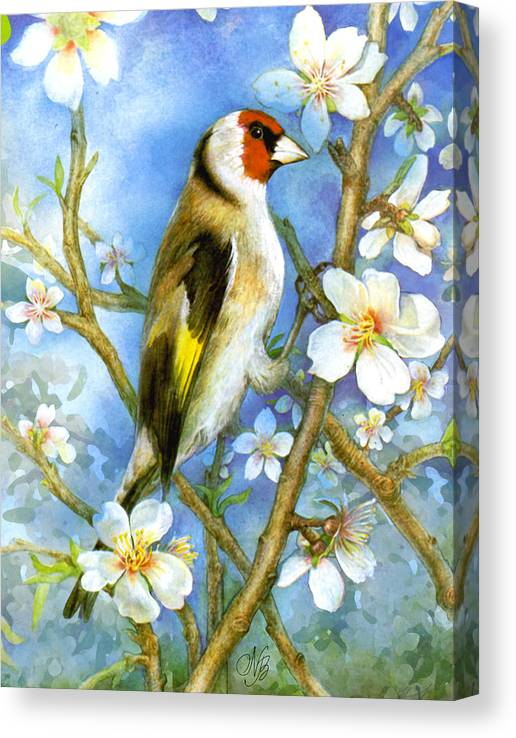 Limited Time Promotion: Springtime Stretched Canvas Print