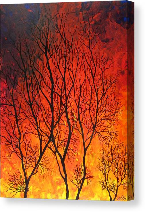 Limited Time Promotion: Fire In The Sky  Stretched Canvas Print by Tammy Oliver