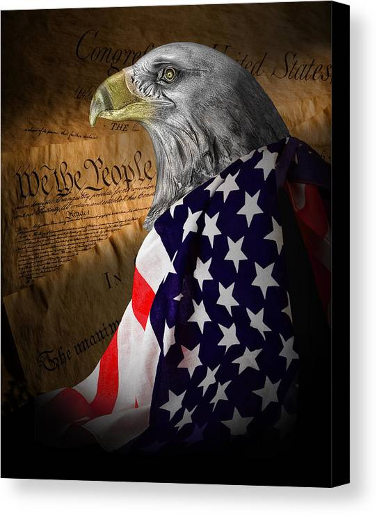 Eagle Canvas Print featuring the photograph We The People by Tom Mc Nemar