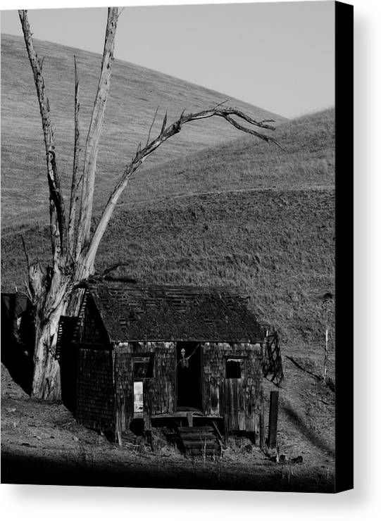 Abandoned Canvas Print featuring the photograph Abandoned Shack Livermore Ca by Troy Montemayor