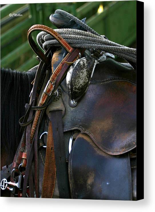 Rodeo Canvas Print featuring the photograph Just Gettin Broke In.. by Carol Miller
