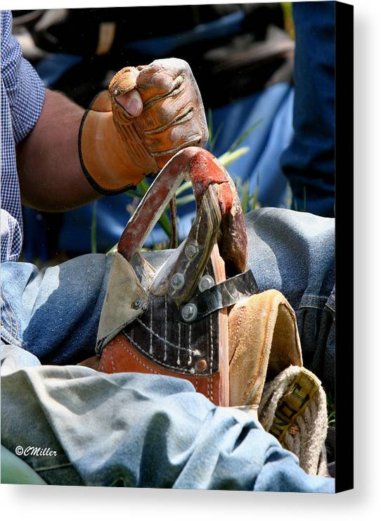 Rodeo Canvas Print featuring the photograph Preparation.. by Carol Miller