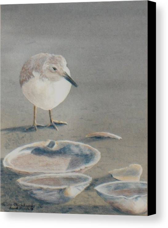 Sandpiper Canvas Print featuring the painting Sand Puddles by Haldy Gifford