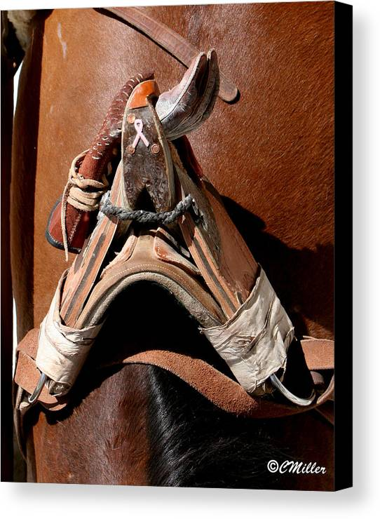 Rodeo Canvas Print featuring the photograph Showing Support For Pink.. by Carol Miller