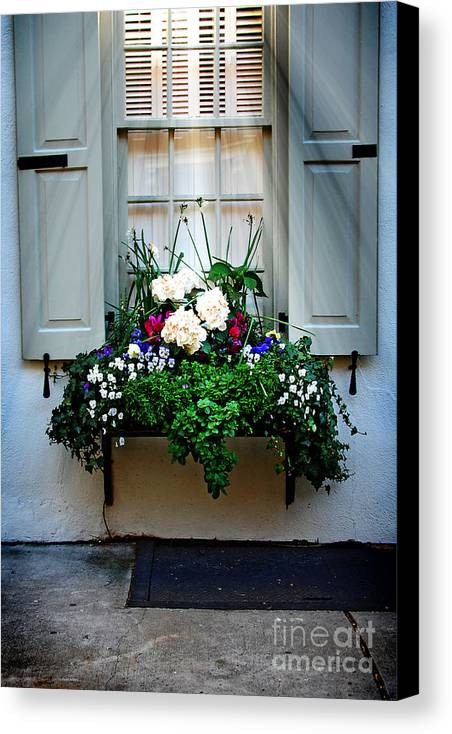 Window Canvas Print featuring the photograph Downtown Charleston Window by Dana Klein