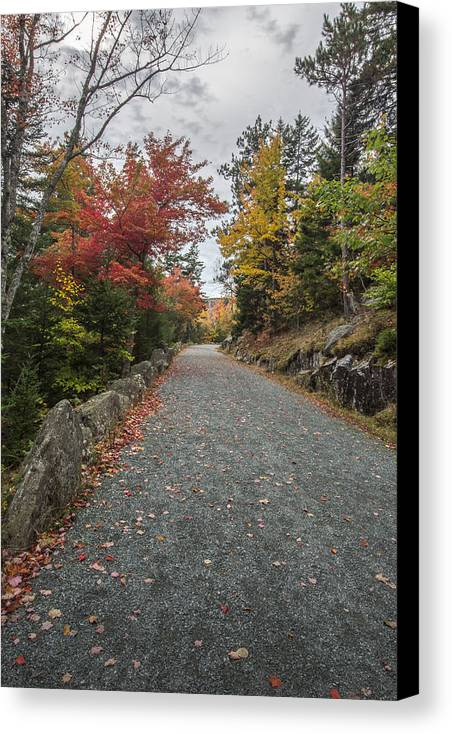 Maine Canvas Print featuring the photograph Where I Go by Jon Glaser