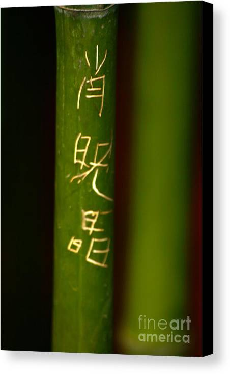 Bamboo Canvas Print featuring the photograph Bamboo 02 by April Holgate