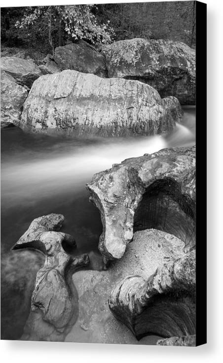 Chattooga River Canvas Print featuring the photograph Chattooga River Bw1 by Derek Thornton