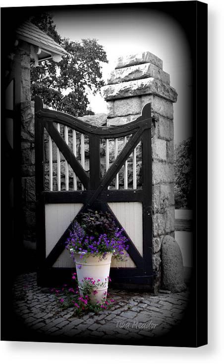 Gate Canvas Print featuring the photograph Garden Gate by Tina Meador
