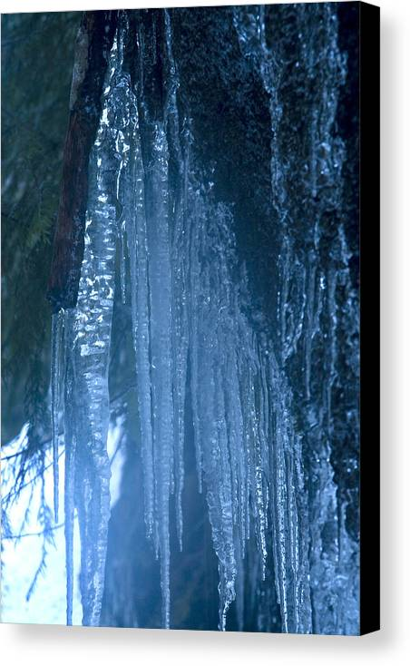 Blue; Close; Cold; Icicle Canvas Print featuring the photograph Icicles 5 by John Higby