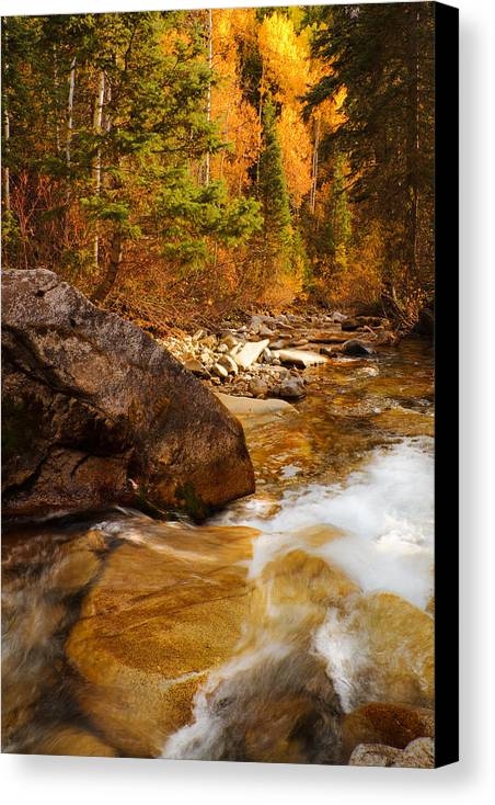 Autumn Canvas Print featuring the photograph Mountain Stream In Autumn by Utah Images