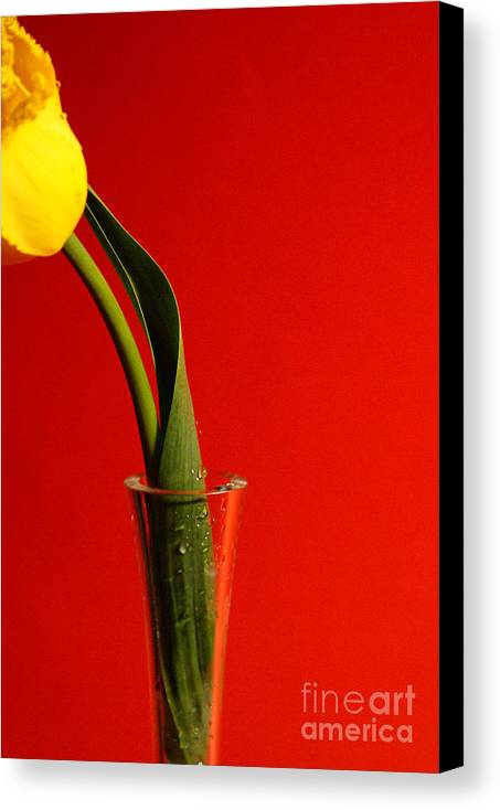 Red Canvas Print featuring the photograph Red by Vadim Grabbe