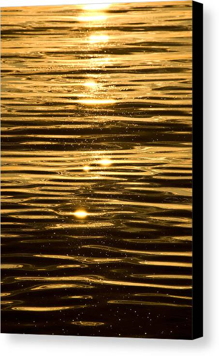 Canvas Print featuring the photograph Reflection by JK Photography