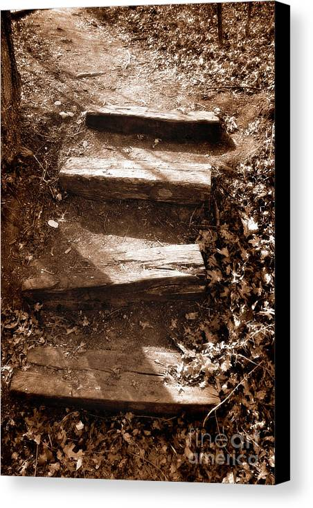 Step Canvas Print featuring the photograph Untitled by Jeannie Burleson