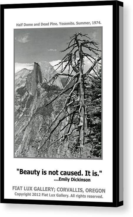 Beauty Canvas Print featuring the photograph Beauty Is Not Caused by Michael Moore