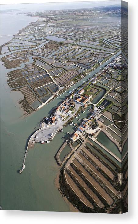 Europe Canvas Print featuring the photograph Port Of Cayenne, Marennes by Laurent Salomon
