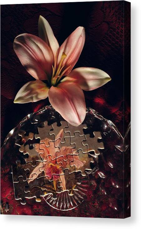 Jigsaw Canvas Print featuring the photograph Puzzled Flower by John B Poisson