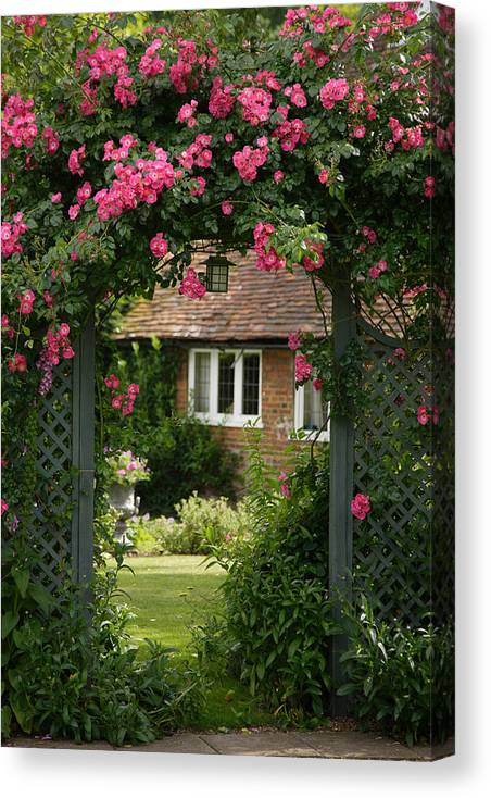 England Canvas Print featuring the photograph Flower Trellis England by Michael Hudson