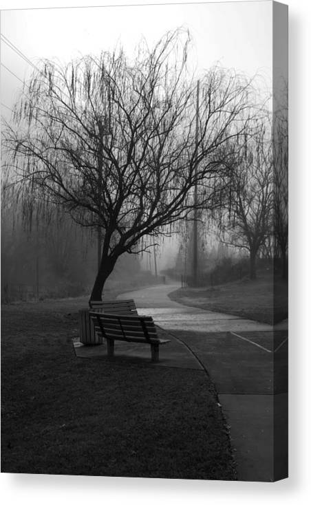 Tree Canvas Print featuring the photograph Weeping by Ayesha Lakes