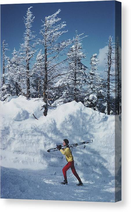 Skiing Canvas Print featuring the photograph Skier In Vermont by Slim Aarons