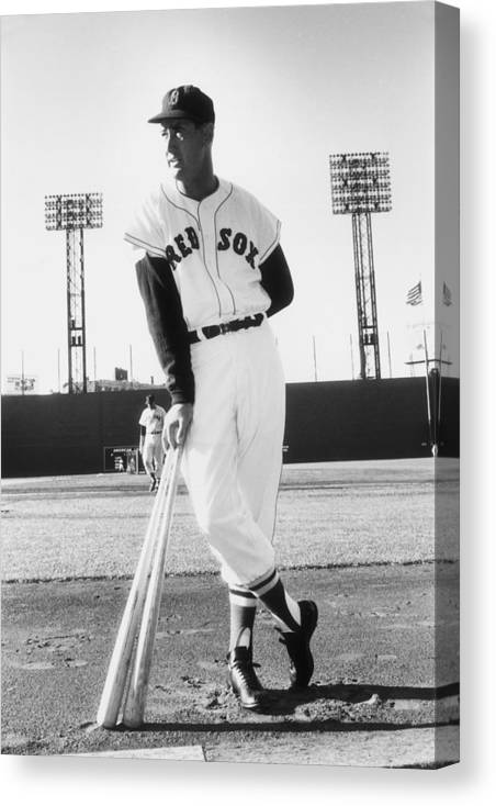 People Canvas Print featuring the photograph Ted Williams by Slim Aarons