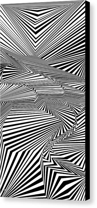 Dynamic Black And White Canvas Print featuring the painting Always Evolving by Douglas Christian Larsen