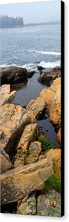 Landscape Canvas Print featuring the photograph Scoodic Tidepool by Peter Muzyka