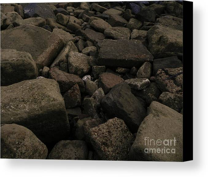 Beach Canvas Print featuring the photograph Beach Stones by Jesse Hanson