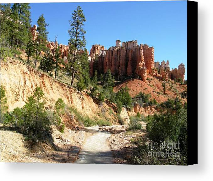 Usa Canvas Print featuring the photograph Utah Red Rock by Ted Pollard