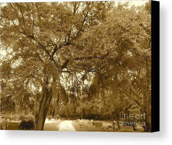 Canvas Print featuring the pyrography Landscape by Frank Conrad