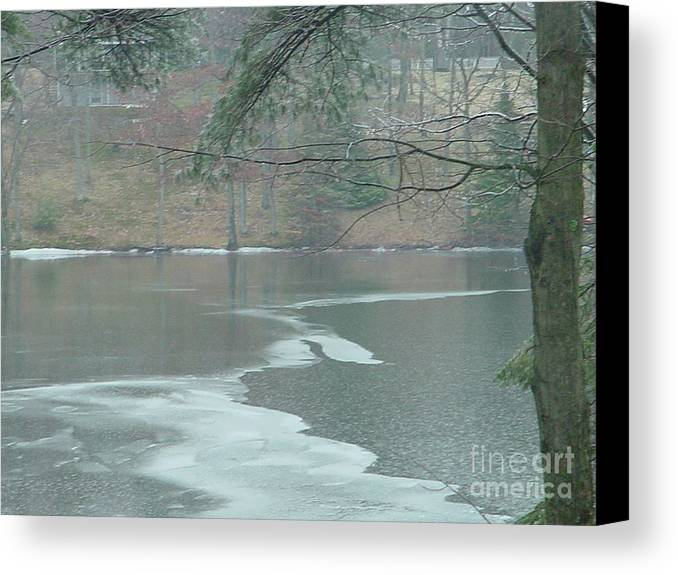 Lake Canvas Print featuring the photograph A Very Cold Rain by Nancie Johnson
