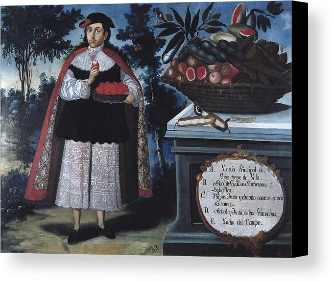 One Canvas Print featuring the photograph Alban, Vicente 18th C.. Quitos Indian by Everett
