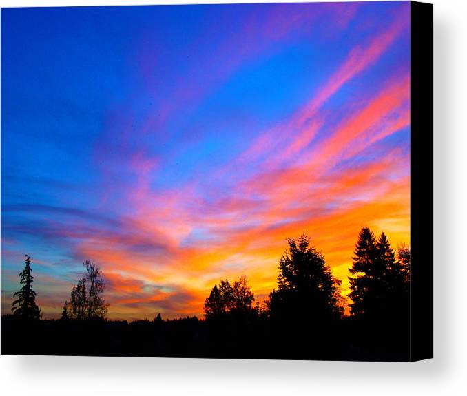 Sunset Canvas Print featuring the photograph Amazing Sunset by Lisa Rose Musselwhite