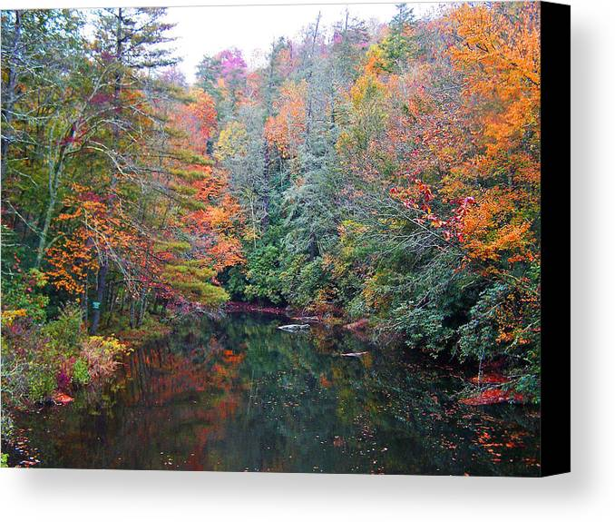 Autumn Canvas Print featuring the photograph Autumn Mountain Stream by Patricia Taylor
