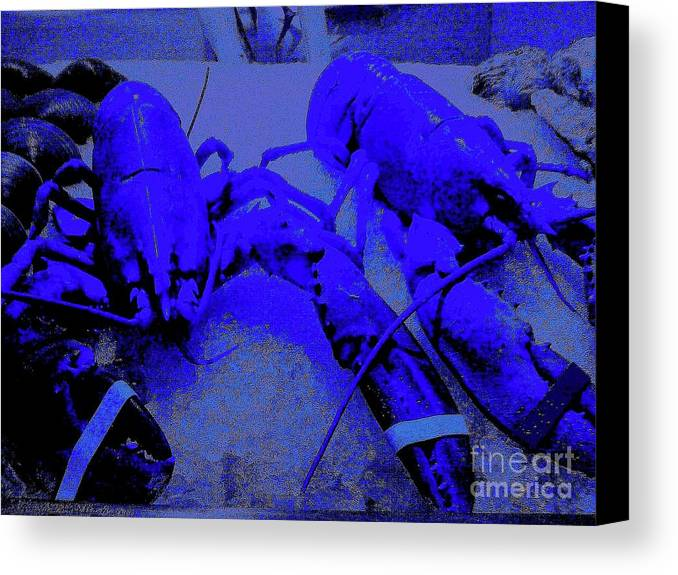 Digital Art Canvas Print featuring the digital art Blue Lobsters 21 by Nina Kaye
