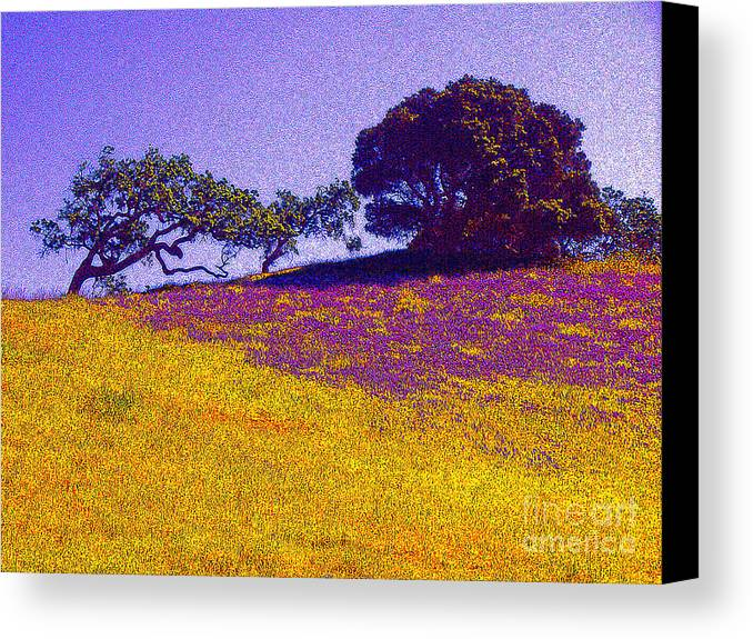 California Canvas Print featuring the photograph California Hills by Jerome Stumphauzer
