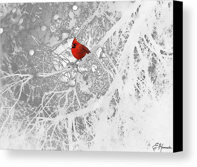 Cardinal In Winter Canvas Print featuring the drawing Cardinal In Winter by Ellen Henneke