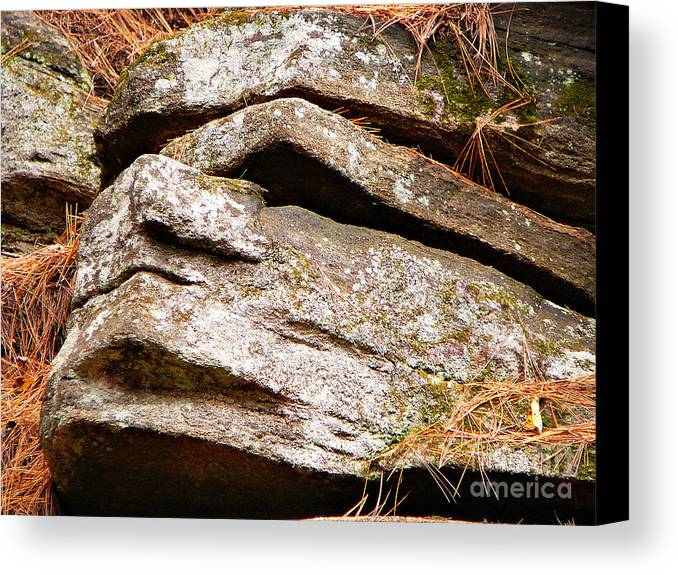 Chin Up Canvas Print featuring the photograph Chin Up by Chris Sotiriadis