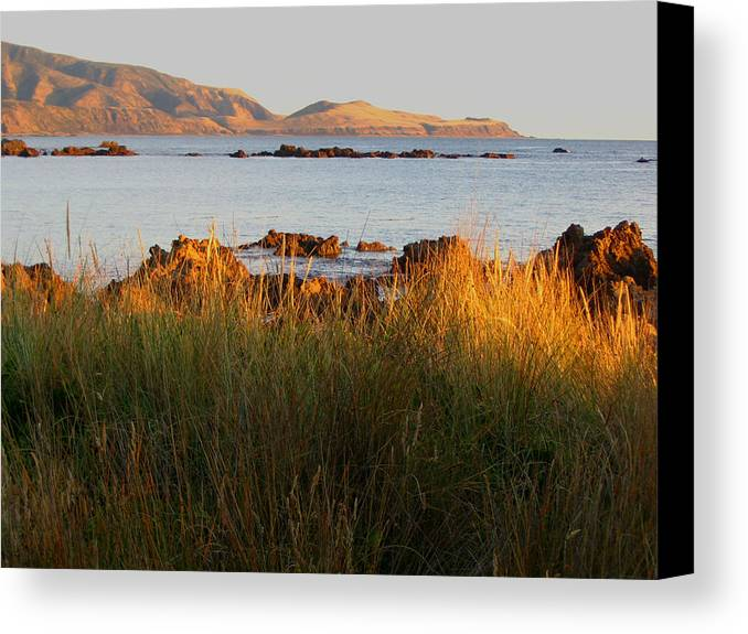Cook Canvas Print featuring the photograph Cook Strait by Amber Nissen