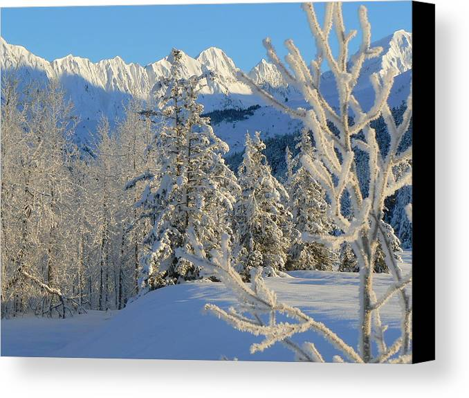 Winter Canvas Print featuring the photograph Dimensions by Shelly Rochon