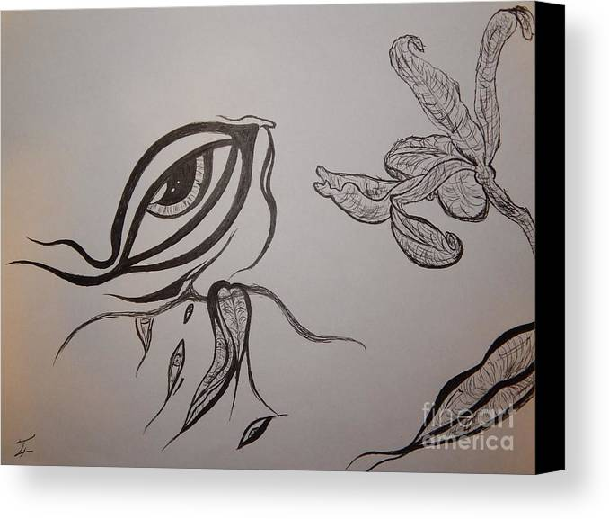 Drained Canvas Print featuring the drawing Drained By The Bloom by Thommy McCorkle