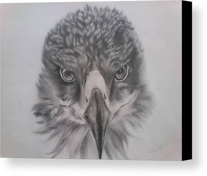 Eagle Canvas Print featuring the drawing Eagle by Lucy D