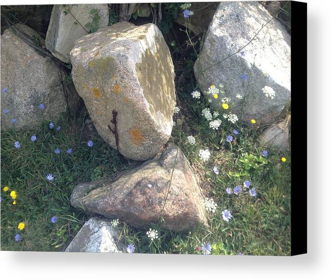 Rocks Canvas Print featuring the photograph Flowers And Rocks by Mireille Damicone