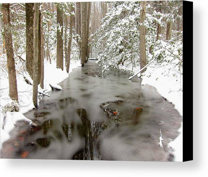 Winter Canvas Print featuring the photograph Frozen Stream by Gordon Cain