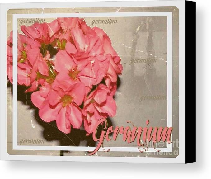 Geranium Canvas Print featuring the painting Geranium by Amanda Hukill