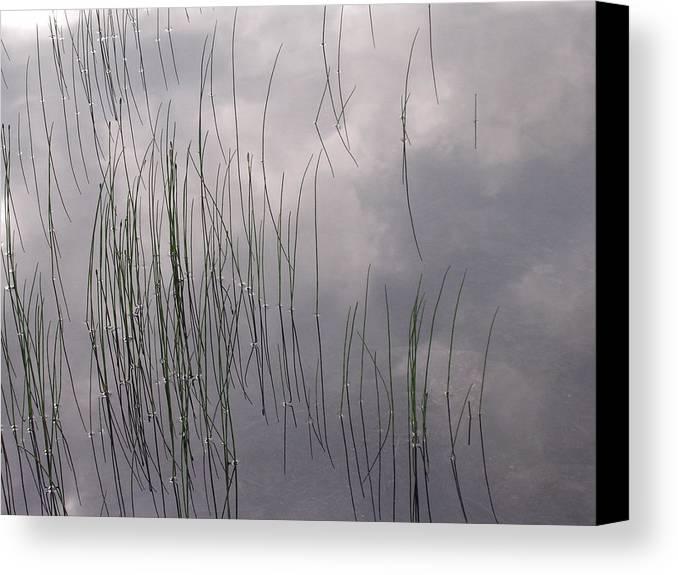 Merritt Lake Canvas Print featuring the photograph Grass Mirrors Sky by Tom Trimbath