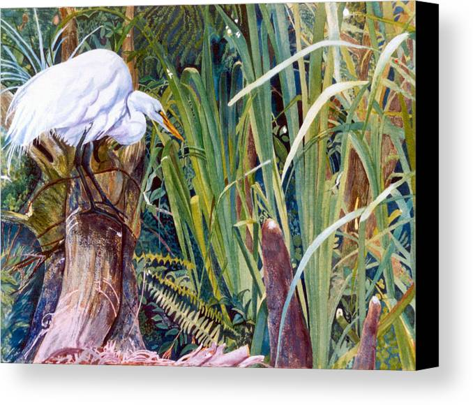 White Heron Canvas Print featuring the painting Great White Heron Sanctuary by Susan Duda