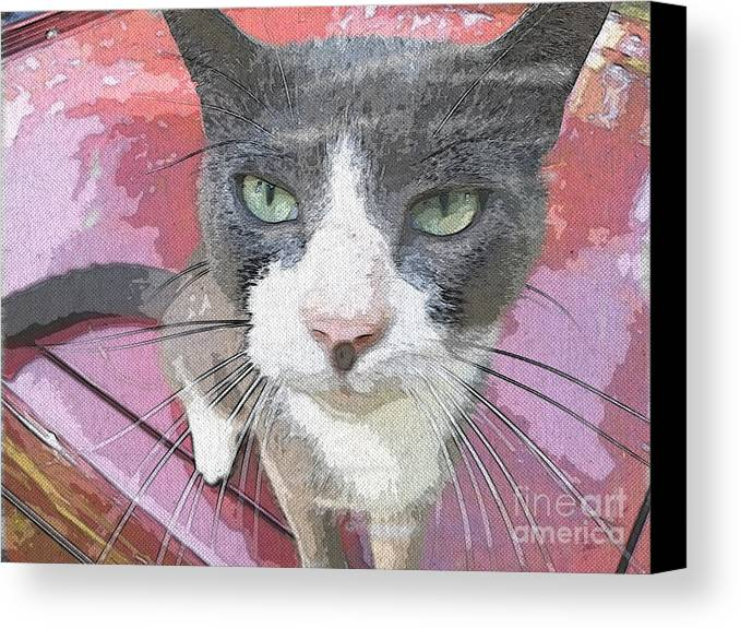 Animal Canvas Print featuring the photograph Green Eyes by Donna Brown