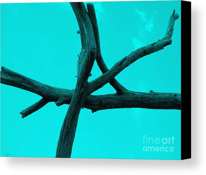 Tree Canvas Print featuring the photograph Green Tree Branch Art by Tina M Wenger